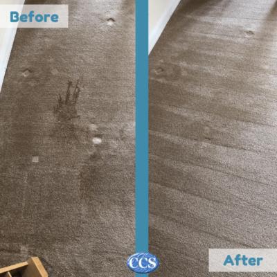 carpet cleaner essex